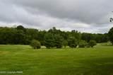 219 Rising Meadow Way - Photo 4
