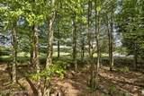 226 Conestoga Trail - Photo 75