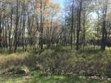 67 Pine Needle Rd - Photo 1
