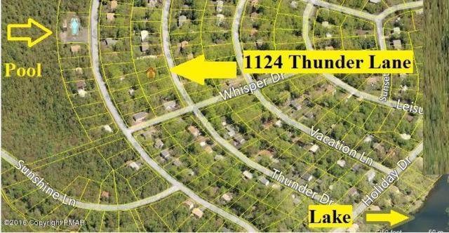 1124 Thunder Ln, Pocono Summit, PA 18346 (MLS #PM-31770) :: Kelly Realty Group