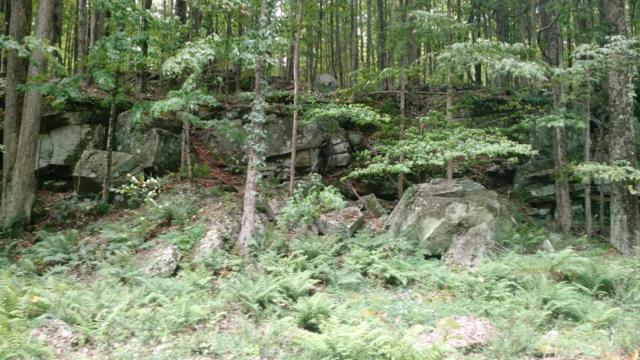 Lot 144C Sheridan Rd, Lakeville, PA 18428 (MLS #PM-39940) :: Keller Williams Real Estate