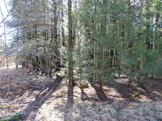 LOT 167 King Arthur Road, Blakeslee, PA 18610 (MLS #PM-44231) :: RE/MAX Results