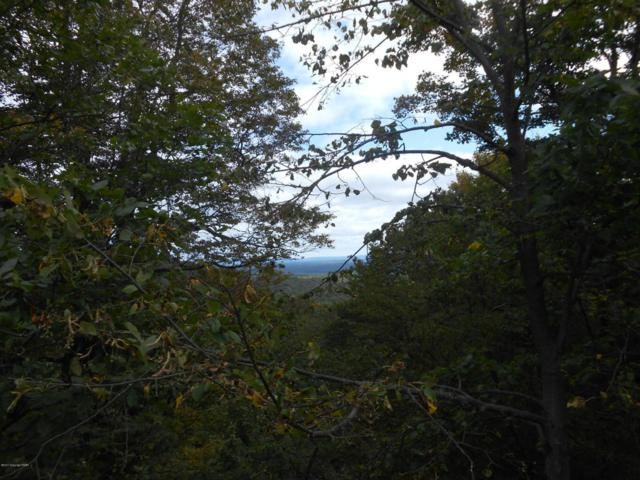 Lot 36 Lake In The Clouds Rd, Canadensis, PA 18325 (MLS #PM-50933) :: Keller Williams Real Estate