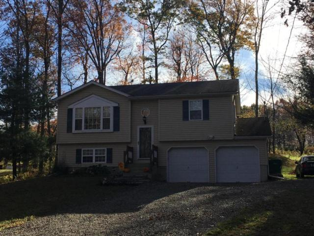 260 Ash Ln, Kunkletown, PA 18058 (MLS #PM-52737) :: RE/MAX Results