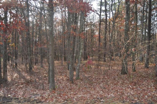 LOT A164 Woodside Drive, Jim Thorpe, PA 18229 (MLS #PM-52800) :: RE/MAX Results