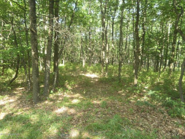 Lot 24 Stone Ridge Rd, Albrightsville, PA 18210 (MLS #PM-53090) :: RE/MAX of the Poconos