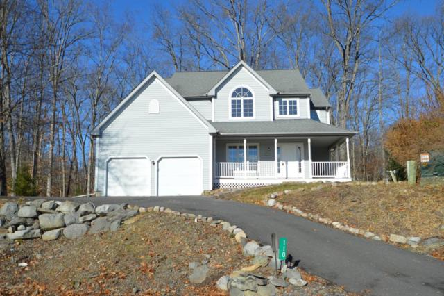 110 Epic Ct, East Stroudsburg, PA 18302 (MLS #PM-53237) :: RE/MAX Results