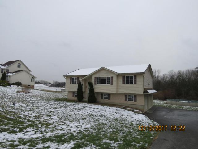 271 Hty Rd, Kunkletown, PA 18058 (MLS #PM-53366) :: RE/MAX Results