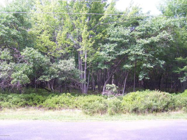 105 Fern Ridge Rd, Blakeslee, PA 18610 (MLS #PM-55463) :: RE/MAX Results