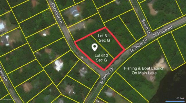 611-612 G North Shore Drive, Albrightsville, PA 18210 (MLS #PM-55573) :: RE/MAX Results