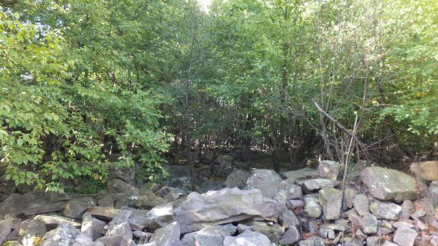 96 Elk Rd, Blakeslee, PA 18610 (MLS #PM-55976) :: RE/MAX of the Poconos