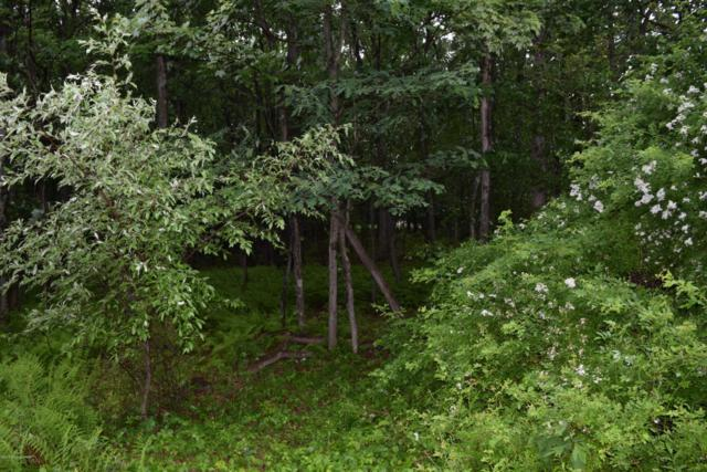 Forest St, Lehighton, PA 18235 (MLS #PM-56494) :: RE/MAX of the Poconos