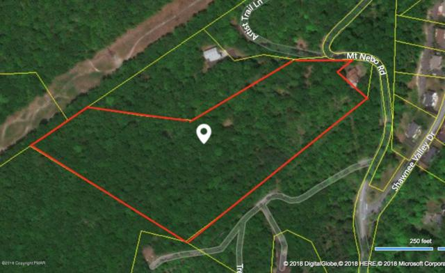 Mt Nebo Dr, East Stroudsburg, PA 18301 (MLS #PM-56510) :: Jason Freeby Group at Keller Williams Real Estate