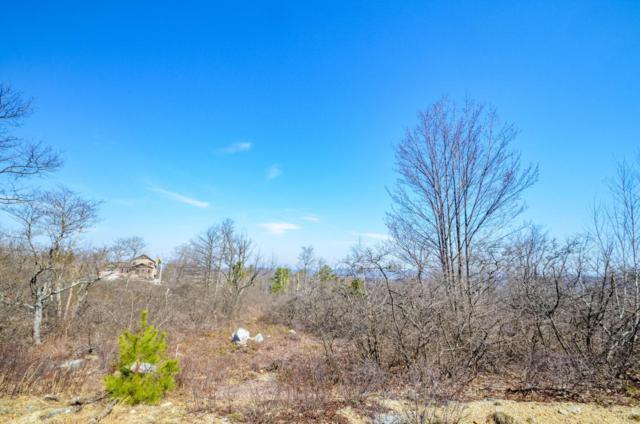 130 R Red Mountain Drive, Hazleton, PA 18202 (MLS #PM-56516) :: RE/MAX of the Poconos
