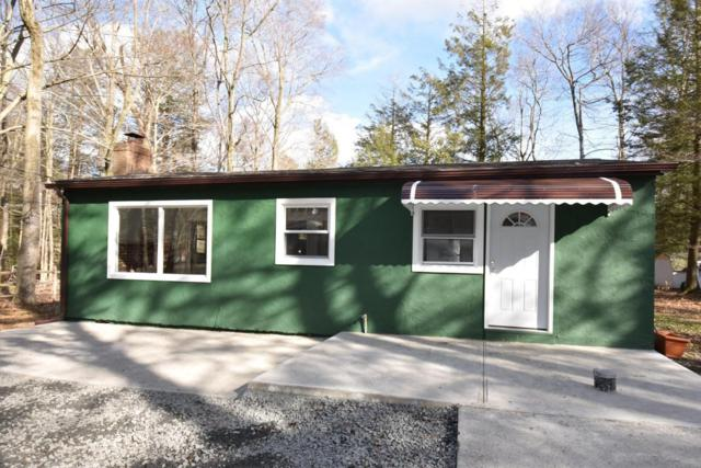 63 Tallwood Dr, Albrightsville, PA 18210 (MLS #PM-56843) :: RE/MAX of the Poconos