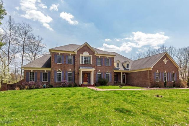 353 Great Bear Way Rd, East Stroudsburg, PA 18302 (MLS #PM-57200) :: Keller Williams Real Estate