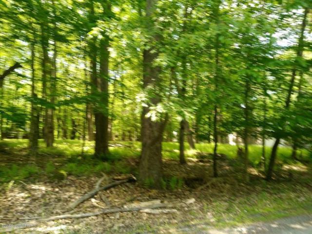Ridge Rd, Pocono Lake, PA 18347 (MLS #PM-58038) :: RE/MAX of the Poconos