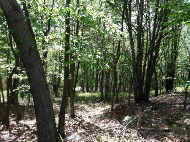 Lot 41/6 Woodland Pl, Blakeslee, PA 18610 (MLS #PM-58079) :: RE/MAX Results