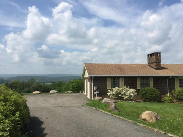 113 Alpine Dr, Kunkletown, PA 18058 (MLS #PM-58186) :: RE/MAX Results