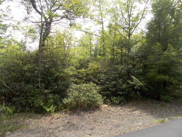 Delaware Dr, Jim Thorpe, PA 18229 (MLS #PM-58413) :: RE/MAX of the Poconos