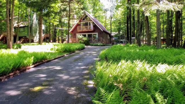 166 Beech Ln, Pocono Lake, PA 18347 (MLS #PM-58467) :: RE/MAX of the Poconos