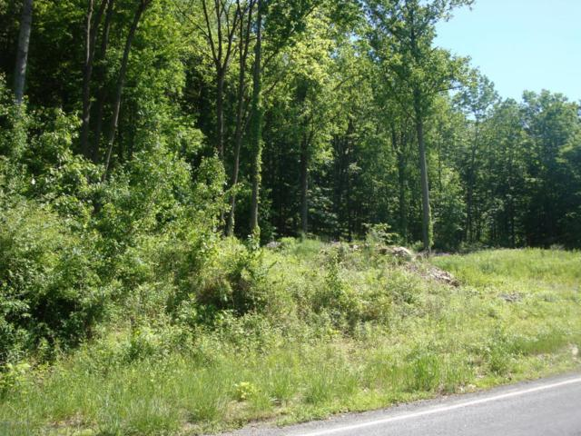 Cherry Valley Rd, Stroudsburg, PA 18360 (MLS #PM-58511) :: RE/MAX Results