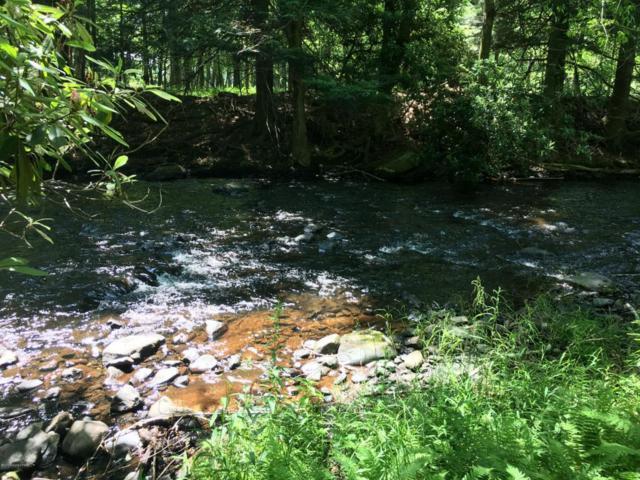 54 N Lehigh River Dr, Gouldsboro, PA 18424 (MLS #PM-59200) :: RE/MAX of the Poconos