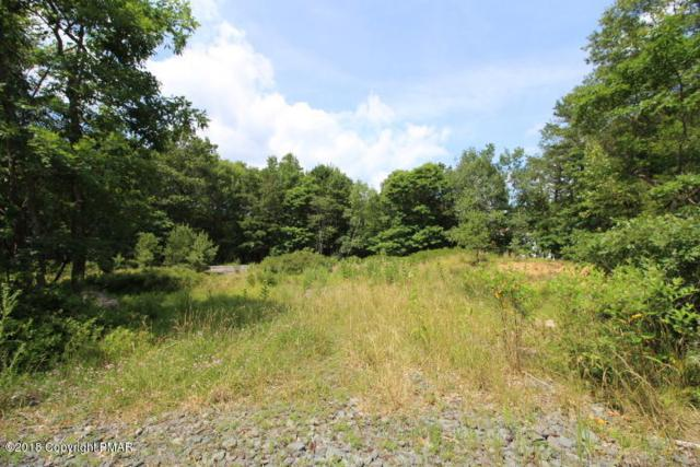 98 Old Stage Rd, Albrightsville, PA 18210 (MLS #PM-59728) :: RE/MAX Results
