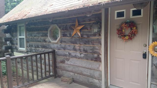 367 Campstead Cir, Pocono Lake, PA 18347 (MLS #PM-60463) :: RE/MAX of the Poconos