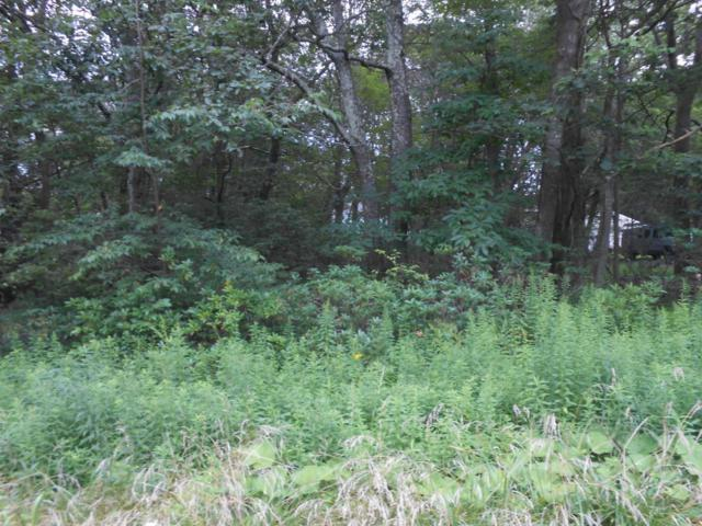 Lot 46 Devonshire Ln, Mount Pocono, PA 18344 (MLS #PM-60593) :: Keller Williams Real Estate