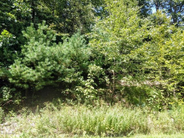 Lot 73 Lr 461 (Shawnee Valley Dr), East Stroudsburg, PA 18302 (MLS #PM-61171) :: RE/MAX of the Poconos