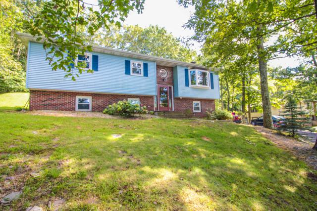 184 Faber Cir, Tannersville, PA 18372 (MLS #PM-61228) :: RE/MAX Results