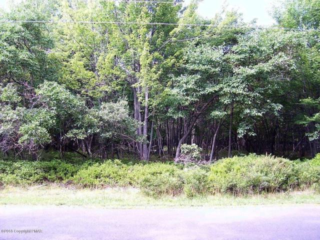 30 Oak Pl, Blakeslee, PA 18610 (MLS #PM-61306) :: RE/MAX Results
