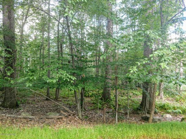 Lot 80D Lookout Point Dr, Canadensis, PA 18325 (MLS #PM-61347) :: Keller Williams Real Estate