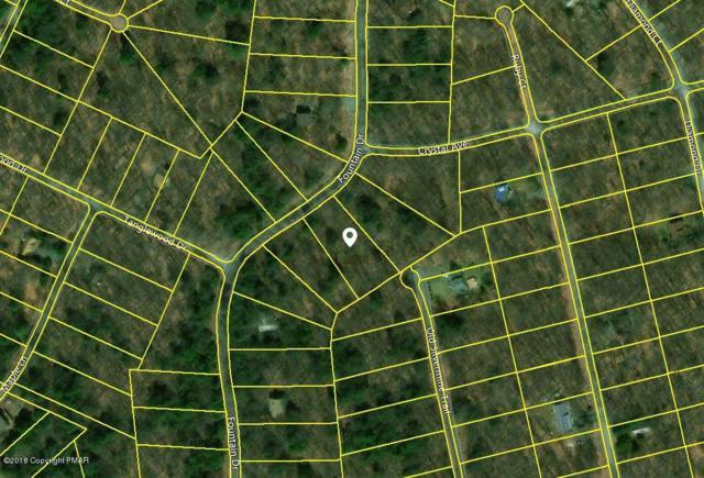Fountain Dr, Gouldsboro, PA 18424 (MLS #PM-62169) :: Keller Williams Real Estate