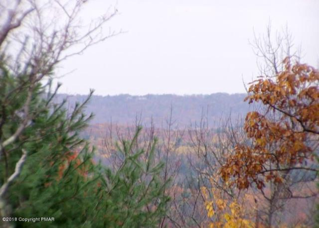Seese Hill Rd, Canadensis, PA 18325 (MLS #PM-63683) :: RE/MAX of the Poconos
