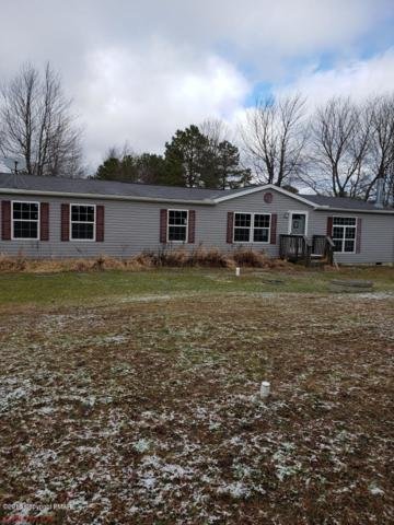116 Muffin Ln, Blakeslee, PA 18610 (MLS #PM-63897) :: RE/MAX Results