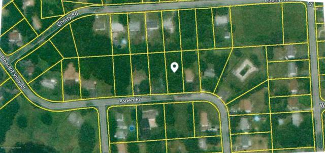 Lot F23 Aspen Dr, Kunkletown, PA 18058 (MLS #PM-63931) :: Keller Williams Real Estate