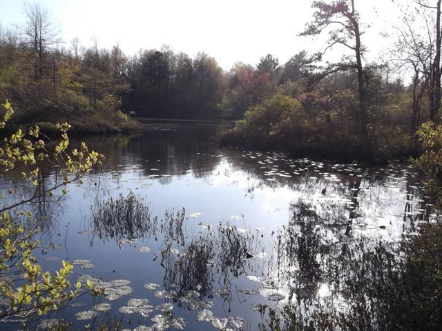 528 Hunter Ln, Long Pond, PA 18334 (MLS #PM-63963) :: RE/MAX Results