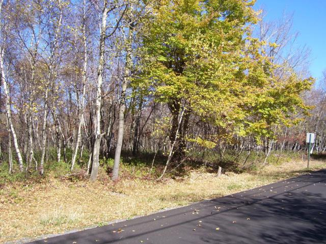 62 Buck Hill Rd, Blakeslee, PA 18610 (MLS #PM-63971) :: RE/MAX Results