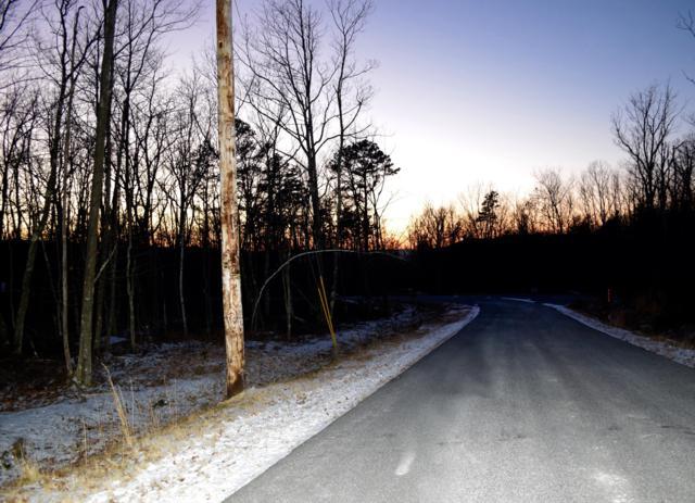 55 Southside Of Creekside Dr, Hazleton, PA 18202 (MLS #PM-64603) :: Keller Williams Real Estate
