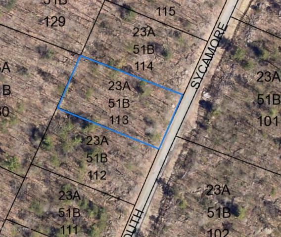 Lot B113 S Sycamore Dr, Jim Thorpe, PA 18229 (MLS #PM-64700) :: RE/MAX Results
