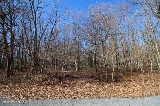 Wild Cherry Ave, Jim Thorpe, PA 18229 (MLS #PM-65008) :: Kelly Realty Group