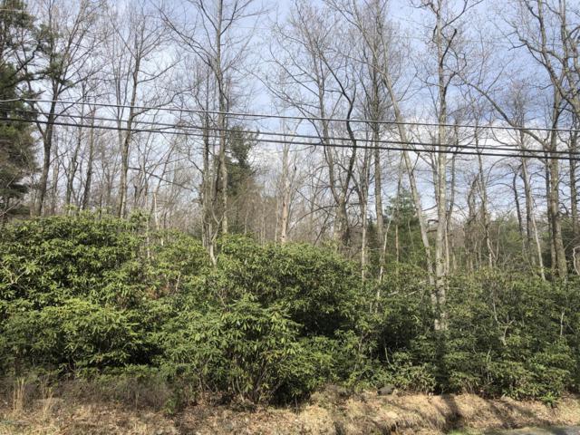 245 Forest Lake Dr, Jim Thorpe, PA 18229 (MLS #PM-65101) :: Keller Williams Real Estate
