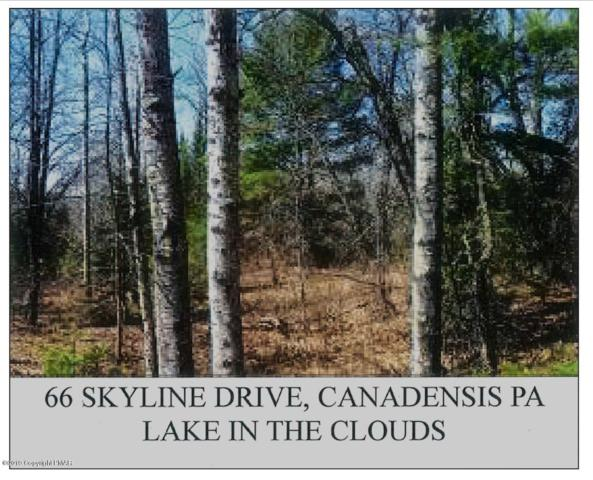 66 Skyline Dr, Canadensis, PA 18325 (MLS #PM-65109) :: RE/MAX of the Poconos