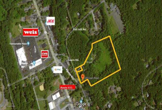 330 Learn Rd, Tannersville, PA 18372 (MLS #PM-65125) :: RE/MAX of the Poconos