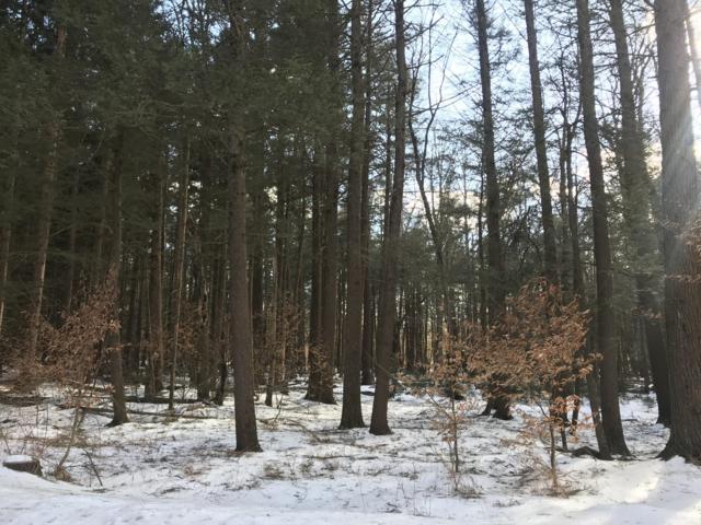 Lot 511 E Forest Rd, Pocono Lake, PA 18347 (MLS #PM-65410) :: Keller Williams Real Estate