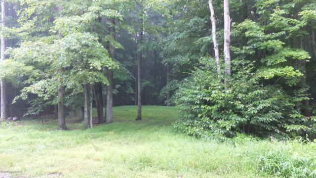 62 Birch Rd, Blakeslee, PA 18610 (MLS #PM-65931) :: RE/MAX Results