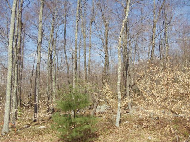 H20 Wolf Hollow Rd, Lake Harmony, PA 18624 (MLS #PM-66102) :: RE/MAX Results