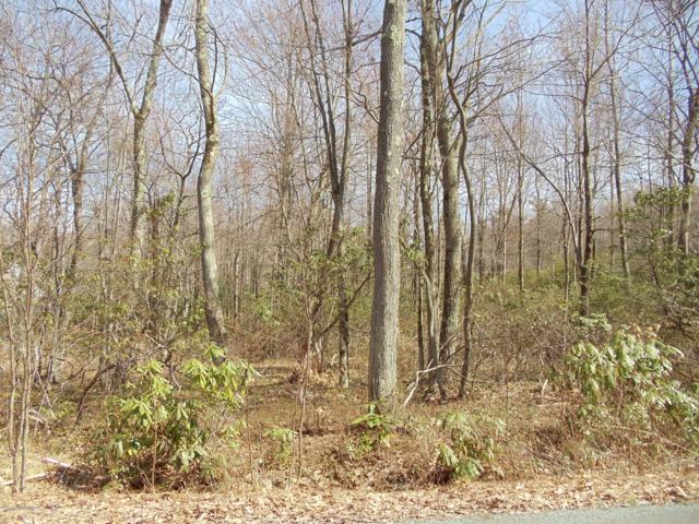 H27 Wolf Hollow Road & Barni Ln, Lake Harmony, PA 18624 (MLS #PM-66112) :: RE/MAX Results